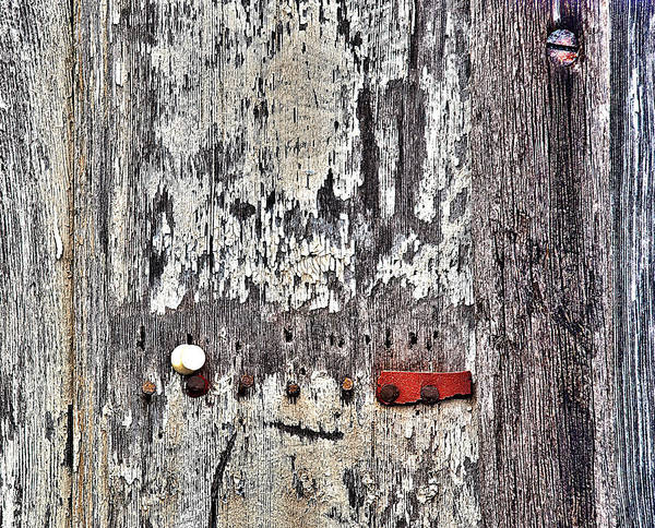 Photograph - Weathered Wood by Rick Mosher