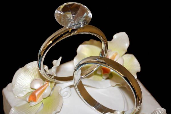 Photograph - Wedding Cake Rings Black by Lesa Fine