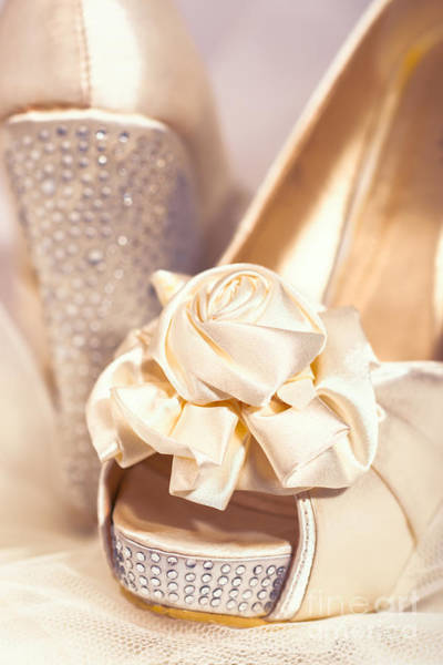 Bride Photograph - Wedding Shoes by Amanda Elwell
