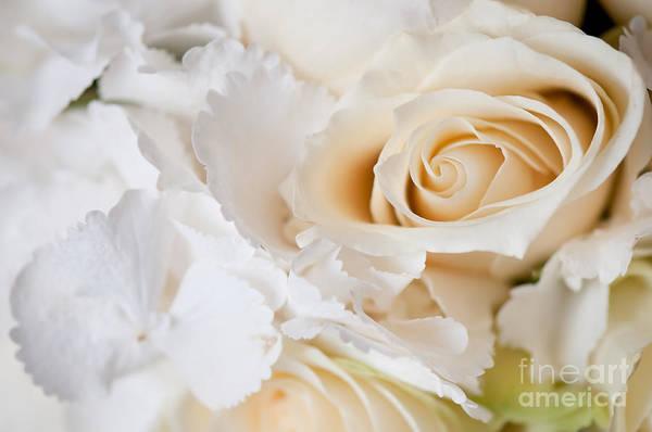 Wedding Bouquet Photograph - Wedding White Flowers by Arletta Cwalina