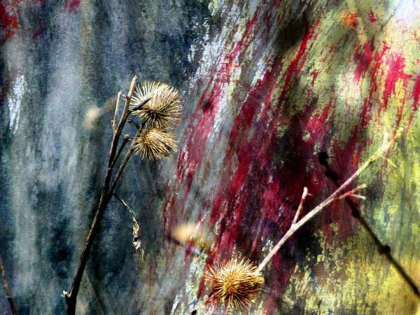 Digital Art - Weed Abstract Blend 1 by Anita Burgermeister