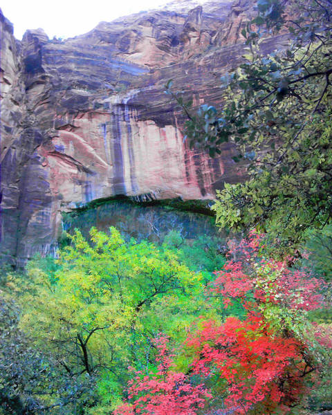 Photograph - Weeping Rock At Zion National Park by Duane McCullough
