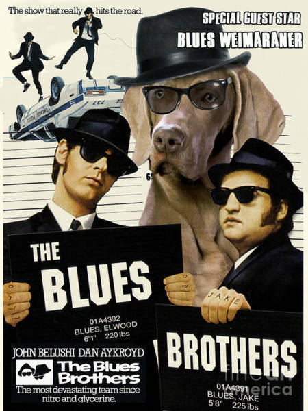 The Blues Brothers Painting - Weimaraner Art Canvas Print - The Blues Brothers Movie Poster by Sandra Sij