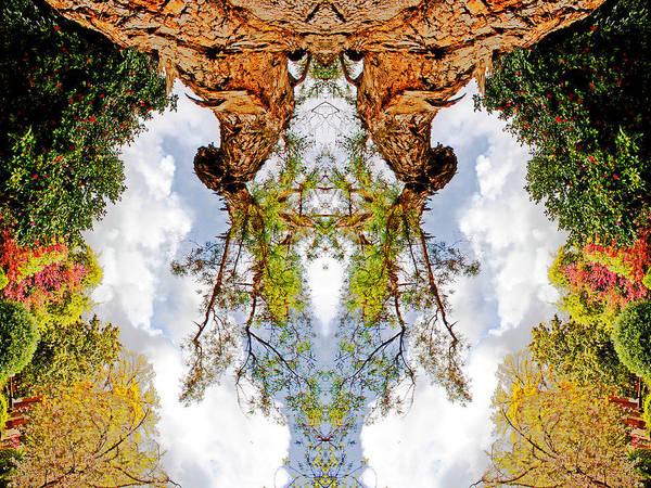 Photograph - Weird Portal 2012 by James Warren
