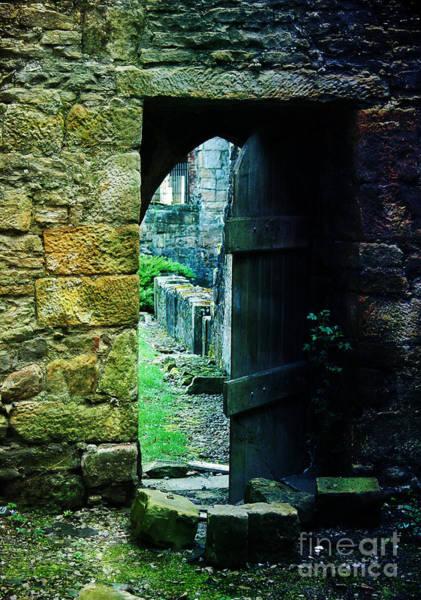 Photograph - Welcome Inside by Randi Grace Nilsberg