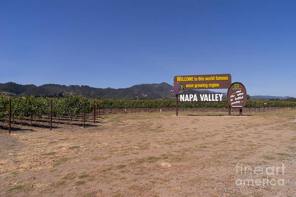 Photograph - Welcome To Napa Valley California Dsc1682 by Wingsdomain Art and Photography