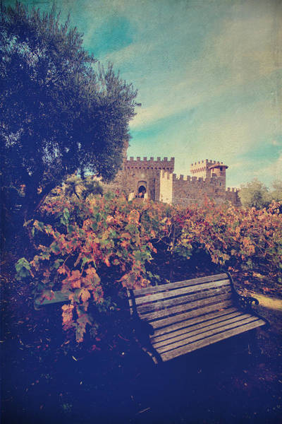 Photograph - We'll Meet Among The Vines by Laurie Search