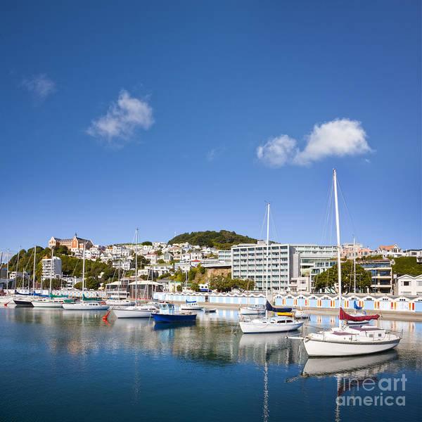 Wellington Photograph - Wellington Oriental Bay Marina New Zealand by Colin and Linda McKie