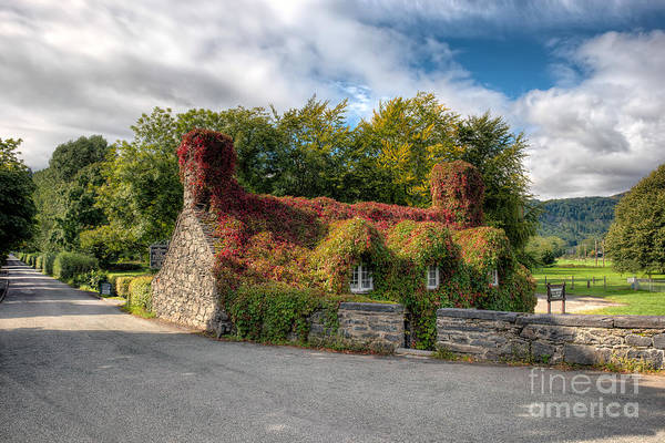 Conwy Photograph - Welsh Cottage by Adrian Evans