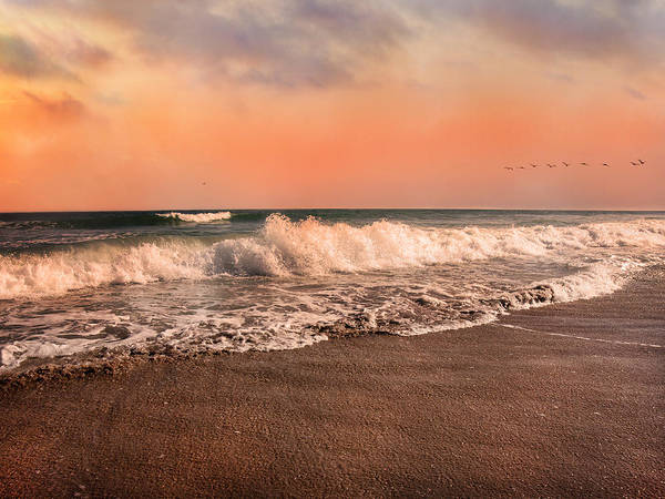 Topsail Photograph - We're Having The Tide Of Our Lives by Betsy Knapp