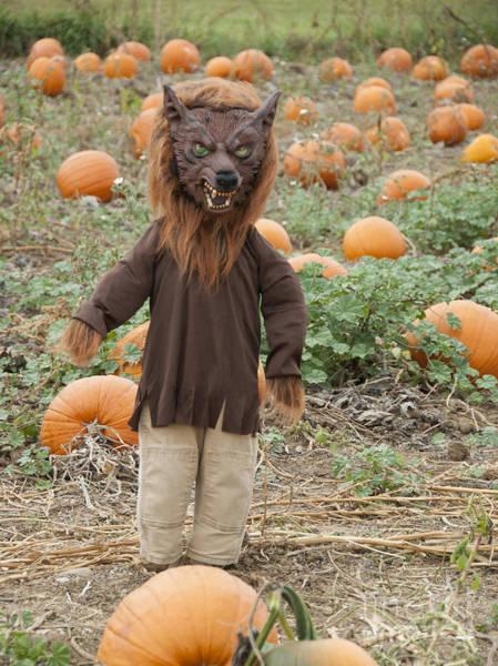 Wall Art - Photograph - Werewolf In The Pumpkin Patch by Juli Scalzi
