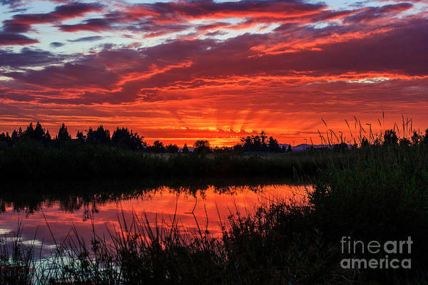 Photograph - West Eugene Sunset by Michael Cross