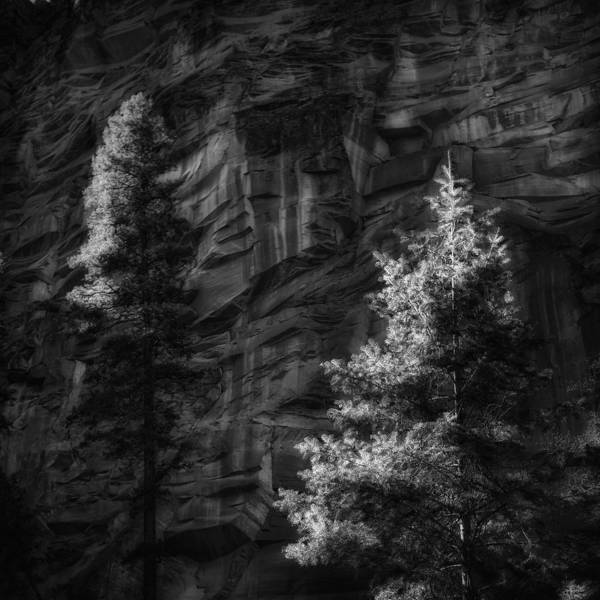 Photograph - West Fork Rock Face Number Three Black And White by Bob Coates