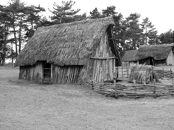 Photograph - West Stow Anglo Saxon House by Richard Reeve