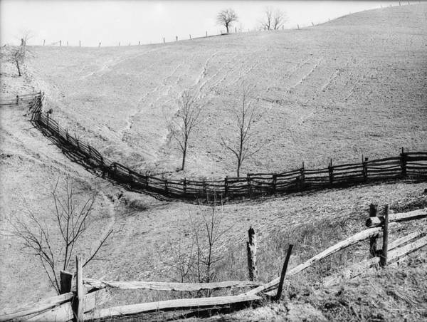 Wall Art - Photograph - West Virginia Erosion, 1939 by Granger