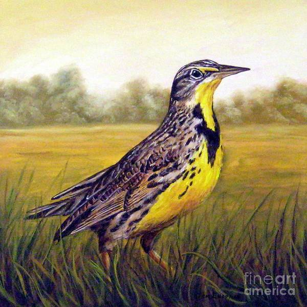 Meadowlark Painting - Western Meadowlark Afternoon by Tom Chapman