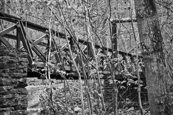 Photograph - Western Pennsylvania Lan 211 by G L Sarti