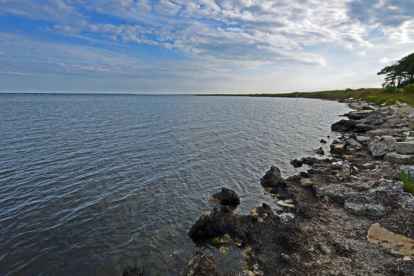 Photograph - Western Shore Of Chincoteague Bay by Bill Swartwout Photography