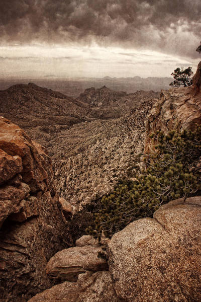 Photograph - Western Wilderness II by Leda Robertson