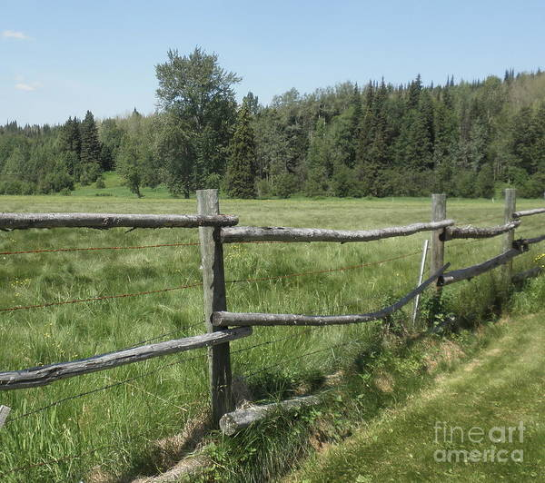 Photograph - Western Wooden Fence by Vivian Martin