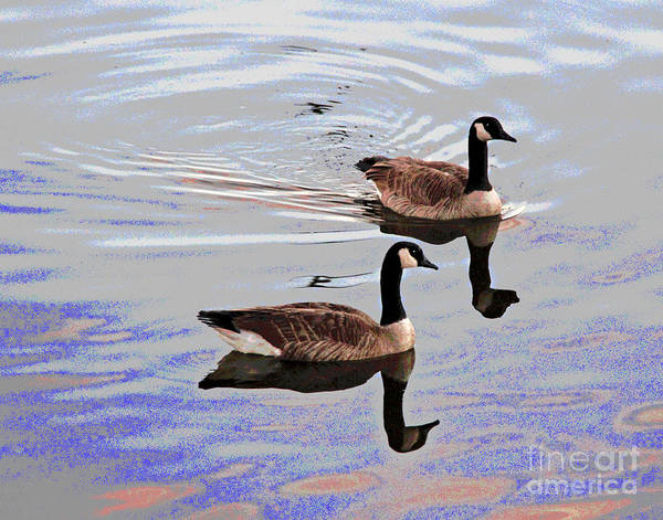 Photograph - Westin Duck Buddies by Larry Oskin