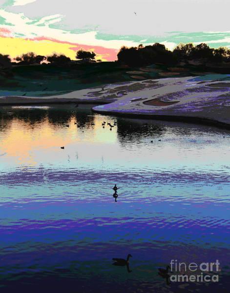 Photograph - Westin Ducks by Larry Oskin