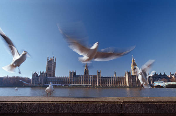 English Culture Photograph - Westminster Palace And Big Ben With Sea by Laurence Monneret