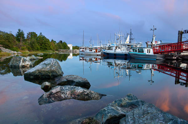 Photograph - Westview Harbor by Darren Bradley