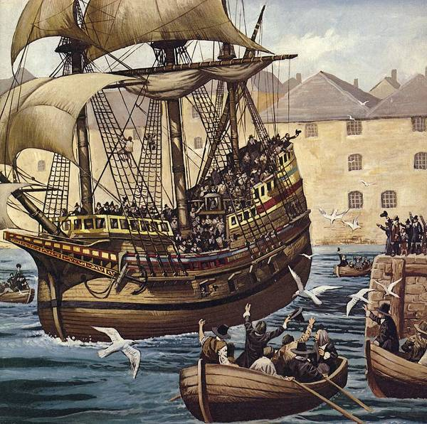 Wall Art - Painting - Westward Ho  The Mayflower Leaves Plymouth by Mike White