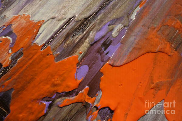 Photograph - Wet Paint 69 by Jacqueline Athmann