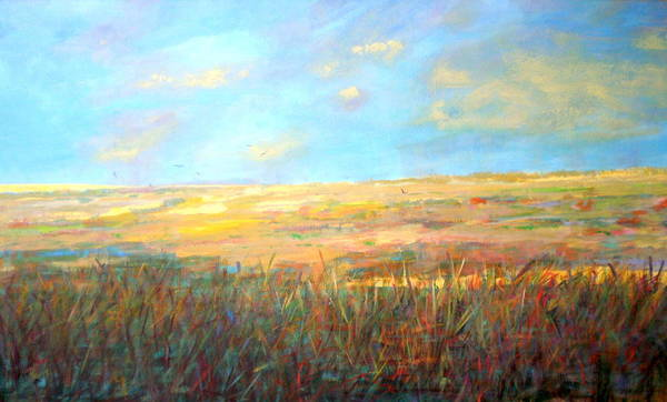 Wall Art - Painting - Wetlands/ As The Crow Flies by Marilyn Hurst