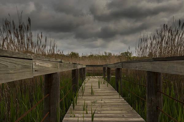 Photograph - Wetlands Boardwalk by Jonathan Davison