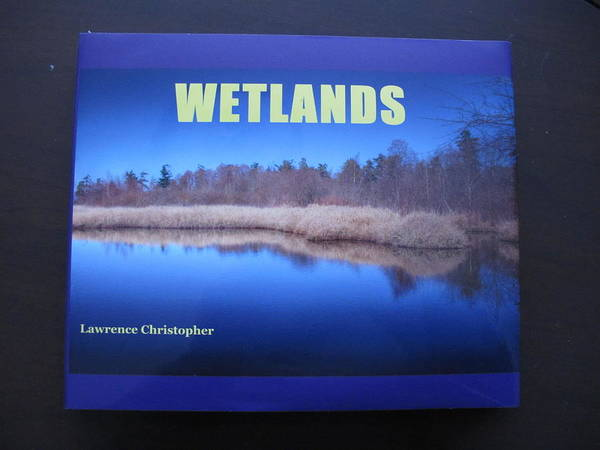 Photograph - Wetlands by Lawrence Christopher