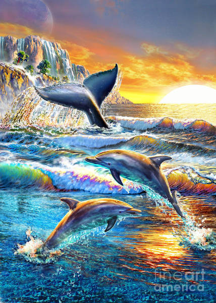 Dawn Digital Art - Whale And Dolphins by MGL Meiklejohn Graphics Licensing