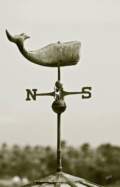 Photograph - Whale Weathervane In Sepia by Ben and Raisa Gertsberg