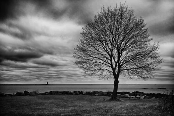 Photograph - Whaleback Maple Tree Stormy Sky by Jeff Sinon