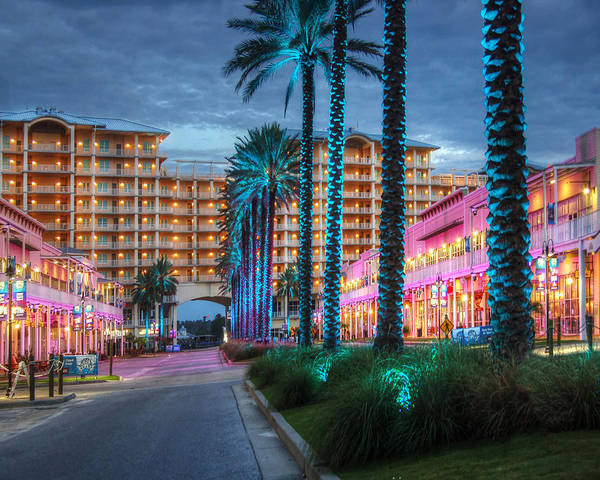 Wall Art - Photograph - Wharf Blue Lighted Trees by Michael Thomas