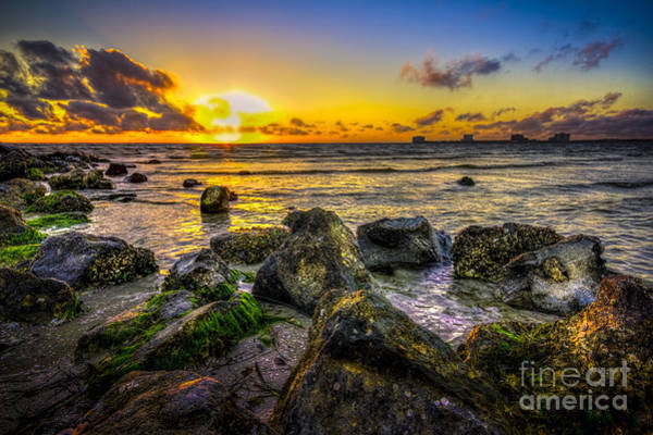 Clearwater Photograph - What A Day by Marvin Spates