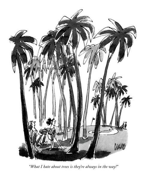 Palm Trees Drawing - What I Hate About Trees Is They're by Claude Smith
