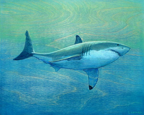 Great White Shark Painting - What Lurks Below by Nathan Ledyard