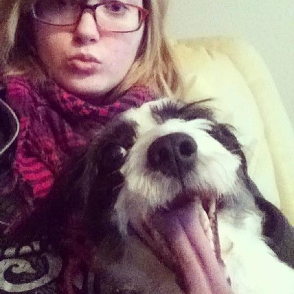 Photograph - Whatchyallknowboutselfies? #jackapoo by Mary Wilkinson