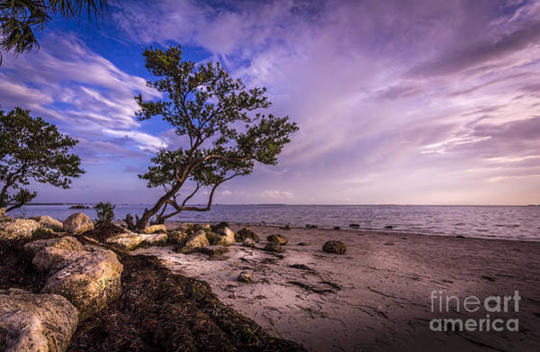 Gulf Of Mexico Photograph - What's Beyond by Marvin Spates