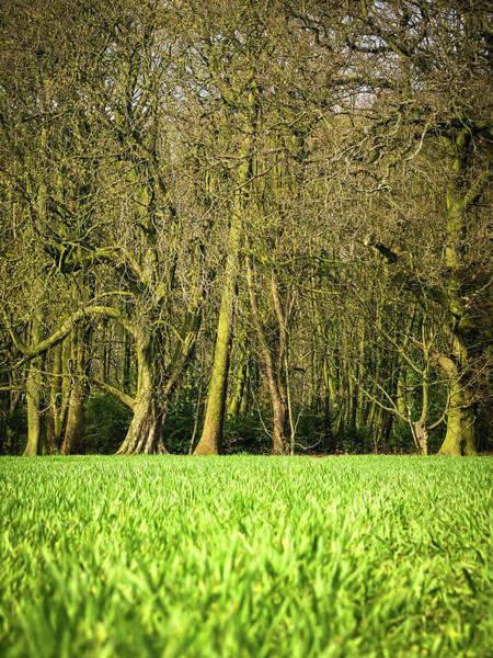 Nottinghamshire Photograph - Wheat Field by Nuzulu