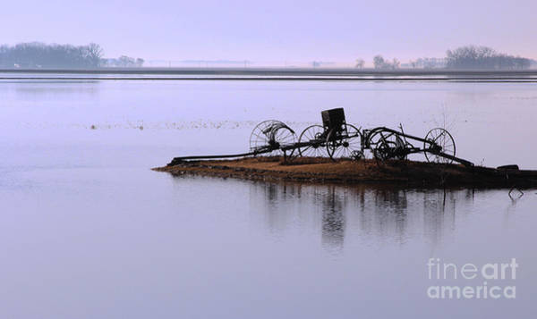 Photograph - Wheat Field Under Water by Steve Augustin