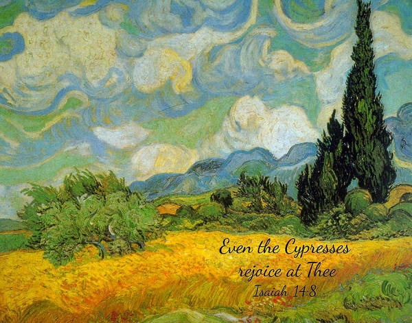 Digital Art - Wheat Field With Cypresses Van Gogh by Denise Beverly