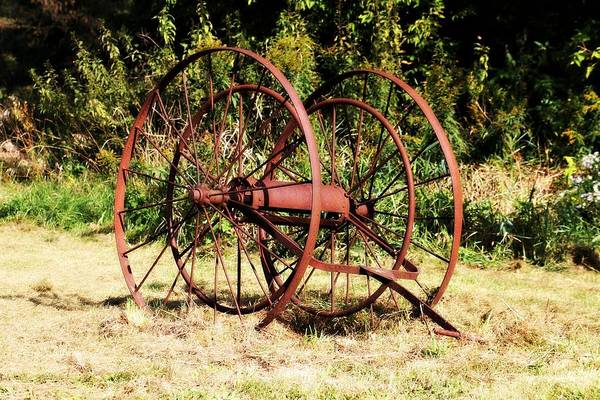 Photograph - Wheels by Rebecca Frank