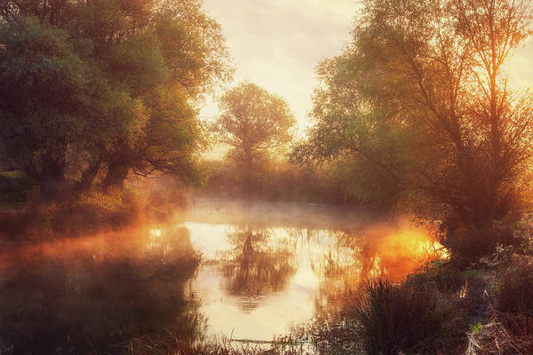 Wall Art - Photograph - When Nature Paints With Light II by Leicher Oliver