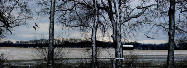 Photograph - When The Rain Clears - Panoramic by Ericamaxine Price