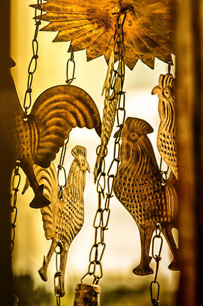 Wall Art - Photograph - When The Rooster Crows by Susan Capuano
