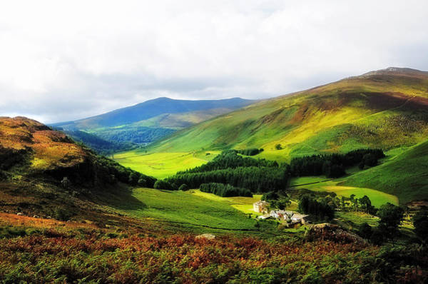 Photograph - Where Is Soul Flying. Wicklow Mountains. Ireland by Jenny Rainbow